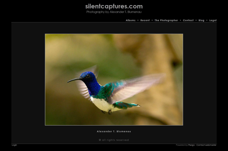 SilentCaptures.com - A Photographic Gallery by Alexander T. Blumenau